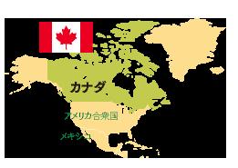 カナダ産百花蜜